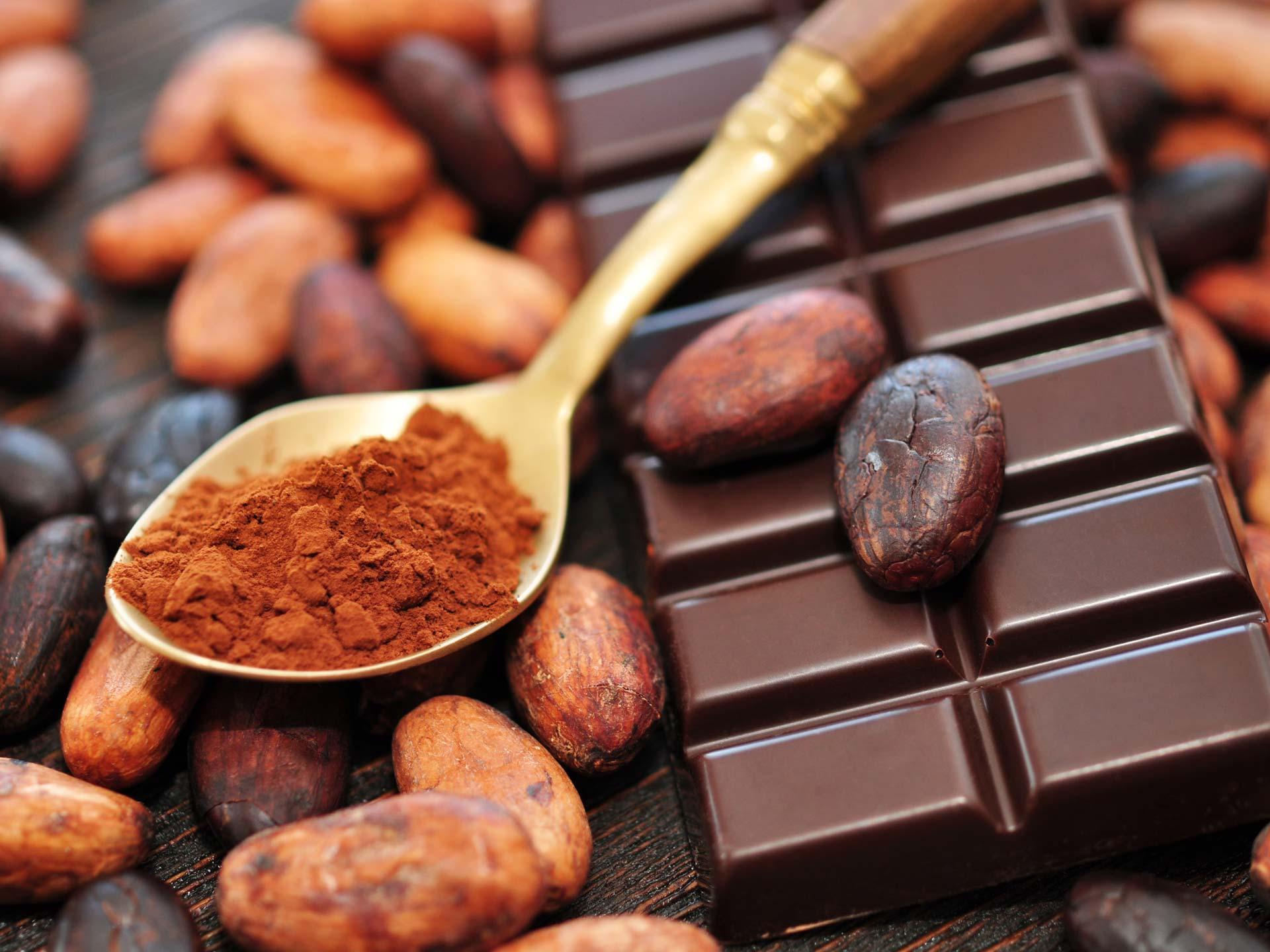 Состав молочного шоколада