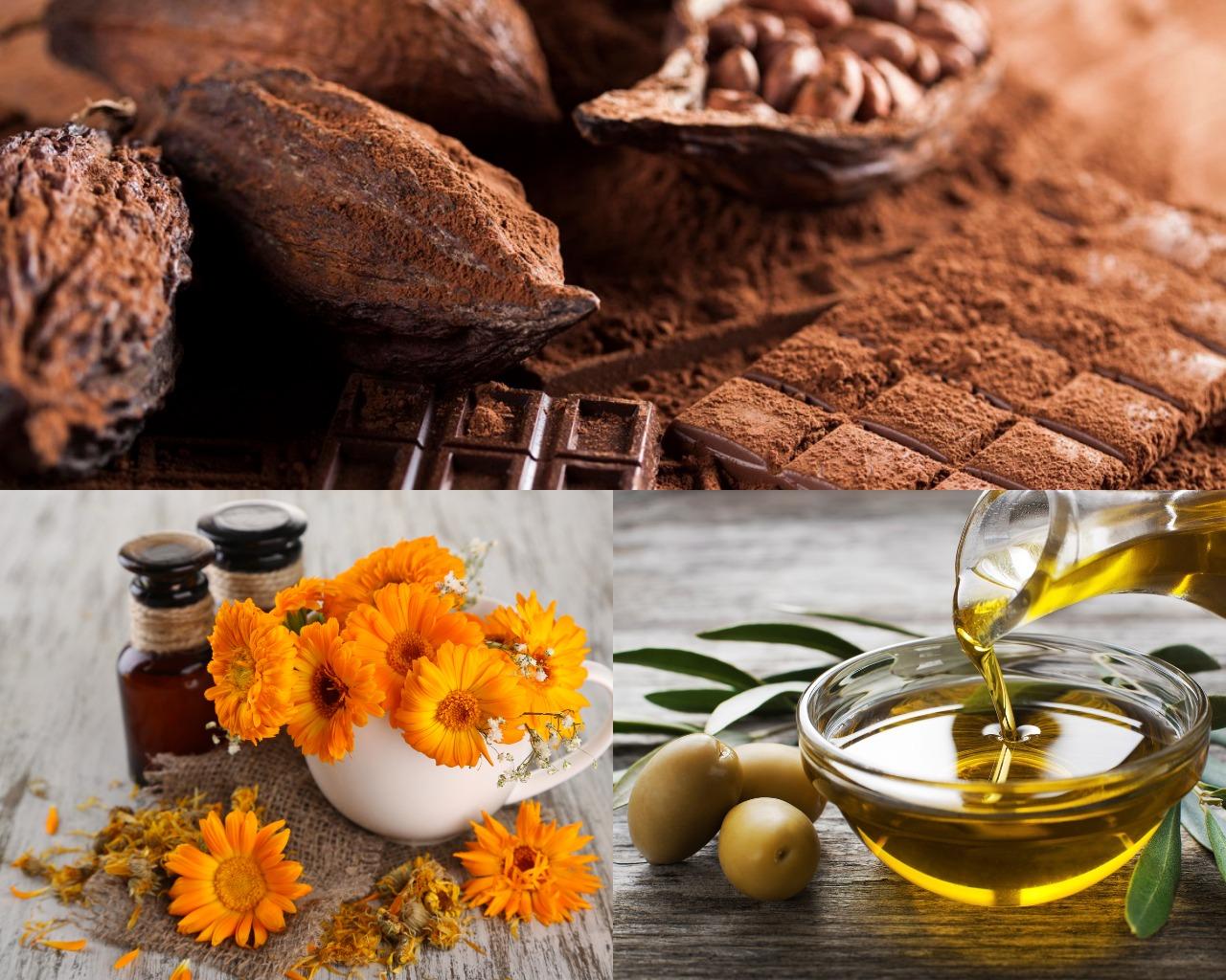 Ингредиенты для шоколадной маски с оливковым маслом и календулой