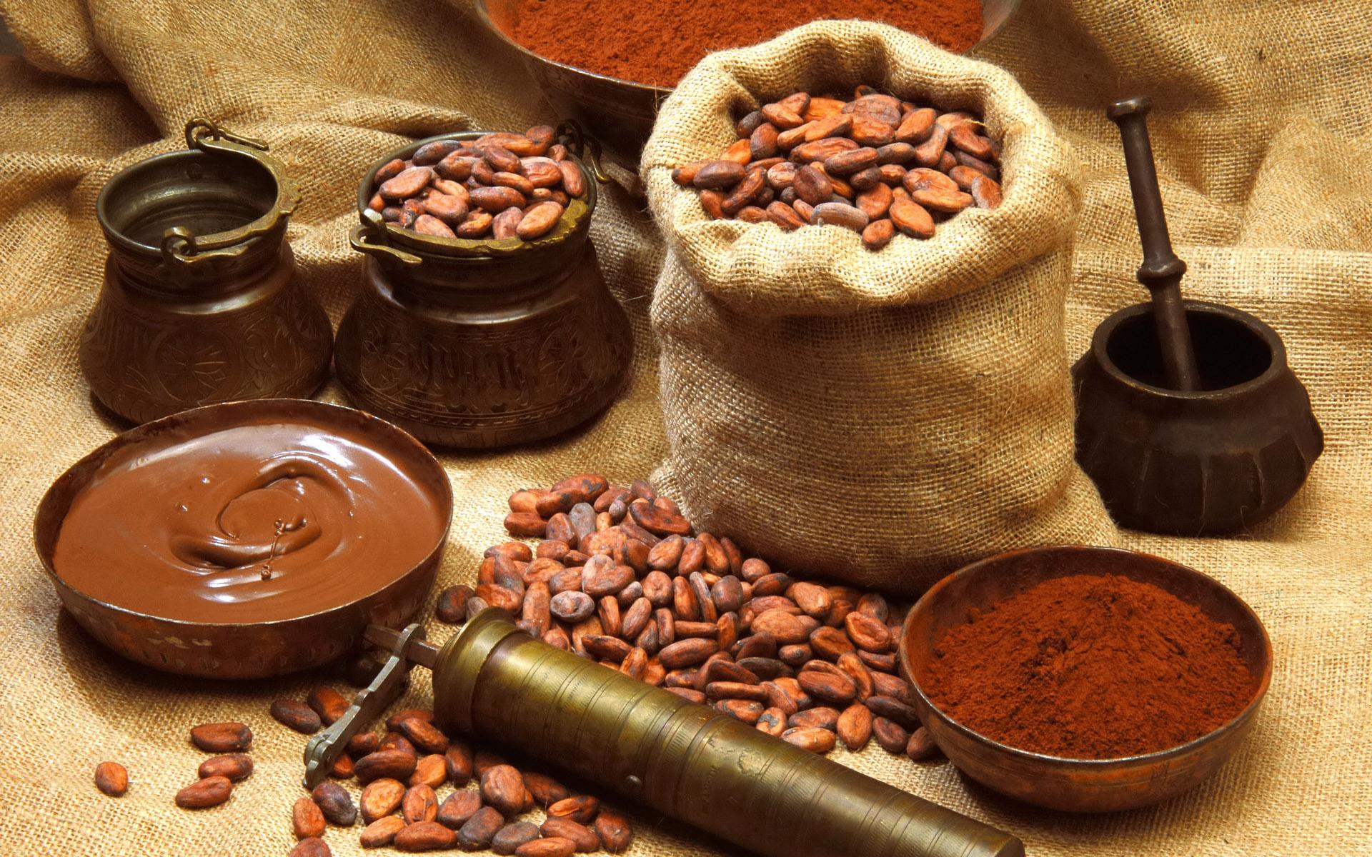 Какао-бобы для приготовления домашнего шоколада