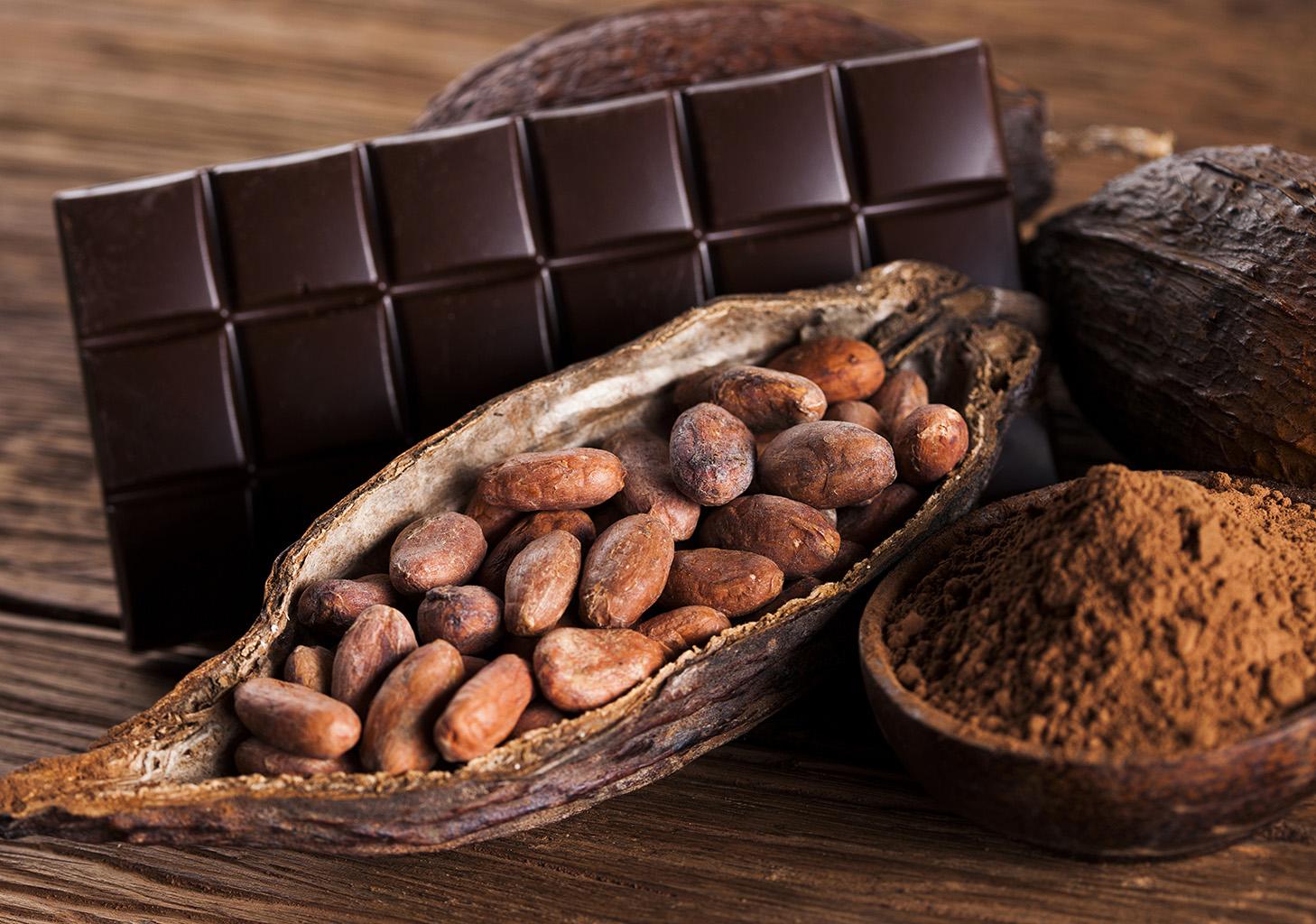 Шоколад и какао